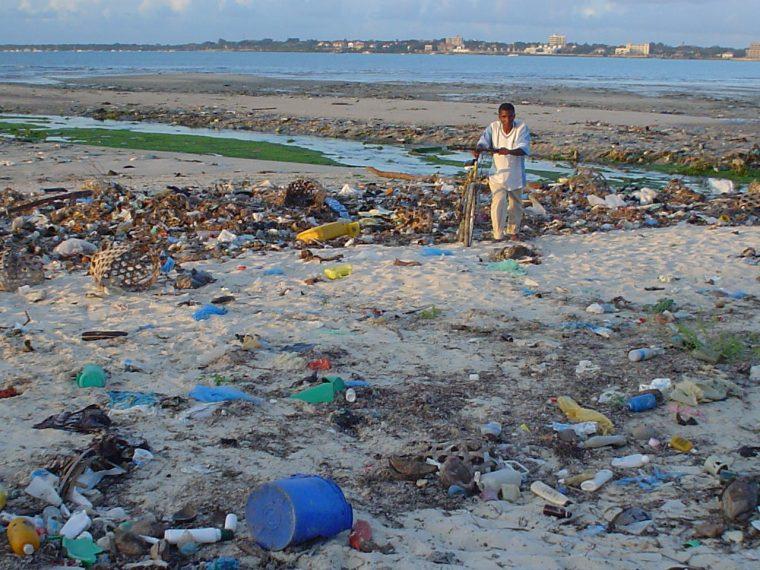 beach_at_msasani_bay_dar_es_salaam_tanzania